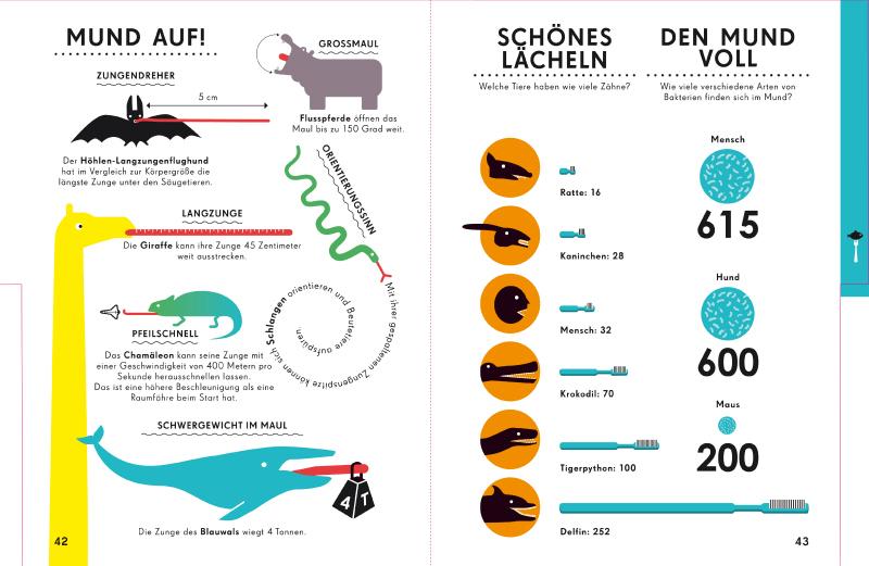 """Illustration aus """"Welt der Tiere"""" von Nicholas Blechmann"""