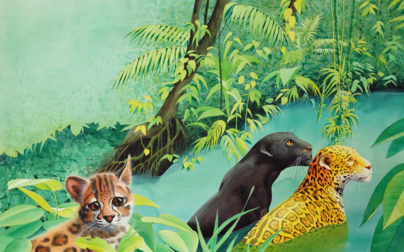"""Illustration aus """"Eines Tages im großen, grünen Wald"""""""