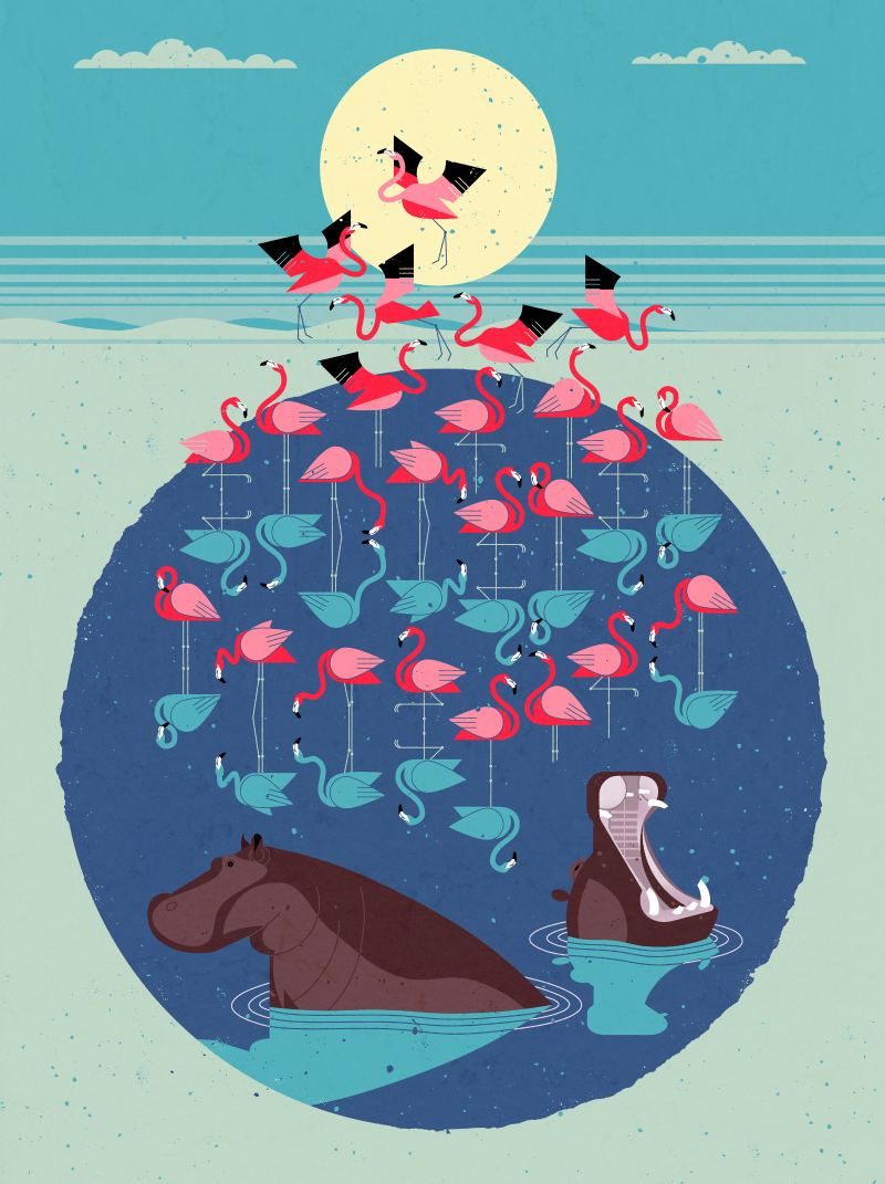 Dieter-Braun-Flamingos