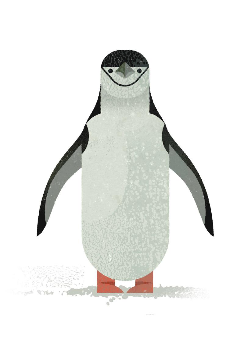 Dieter-Braun-Pinguin